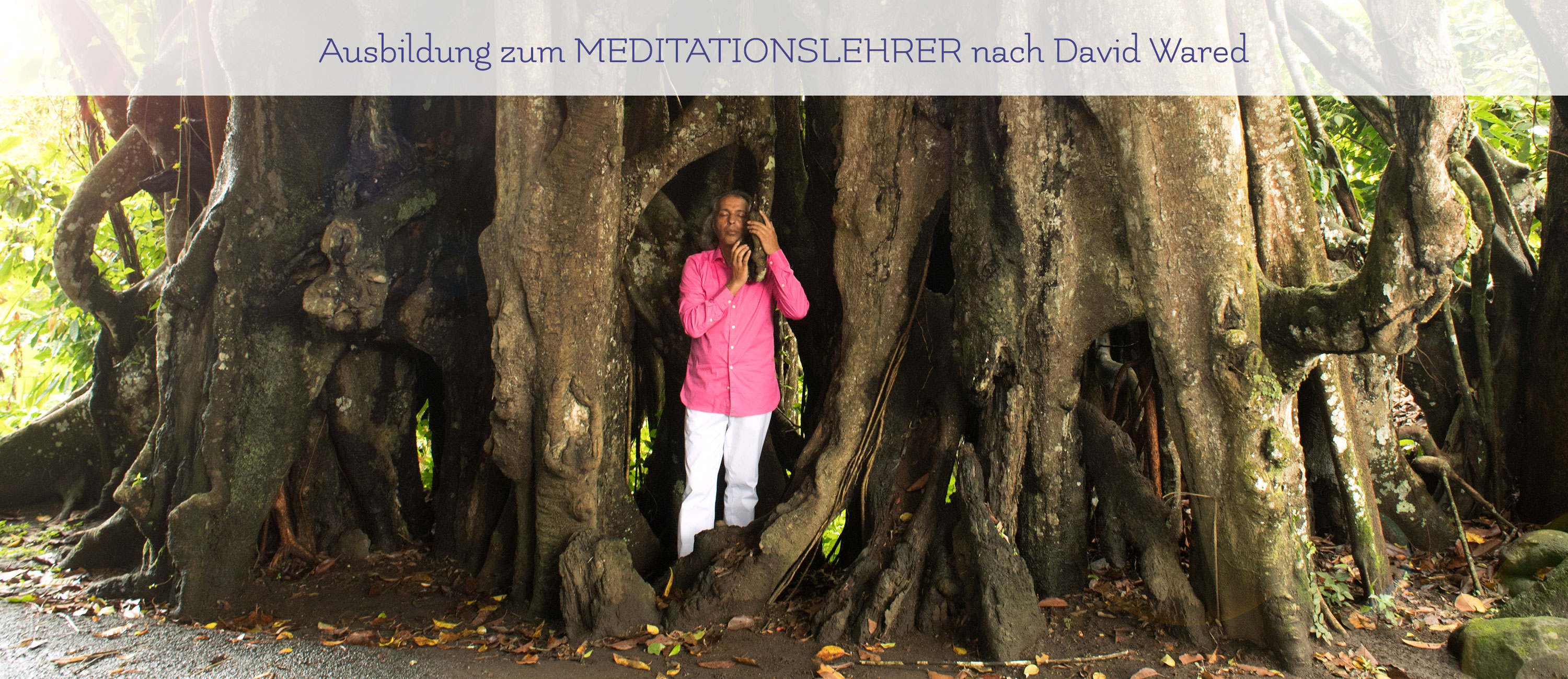 Meditation nach David Wared